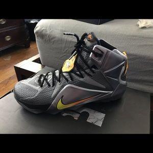 Nike Lebron 12 Flight Size 12